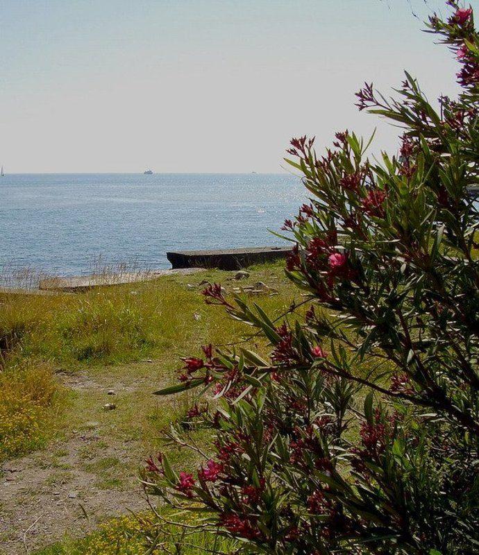 Морской пейзаж 2photo preview
