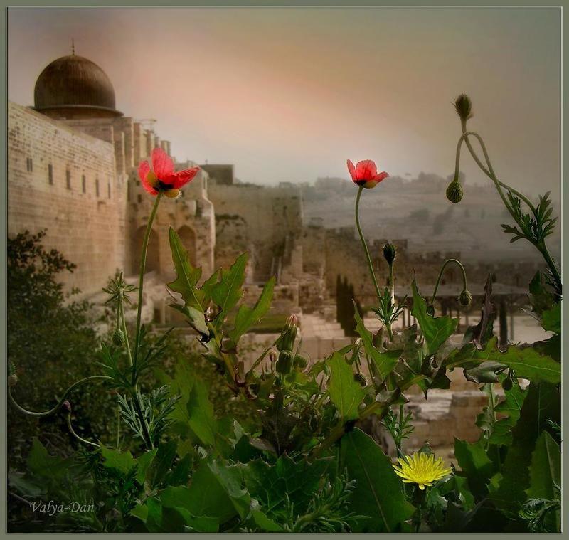 Иерусалимское утро...photo preview