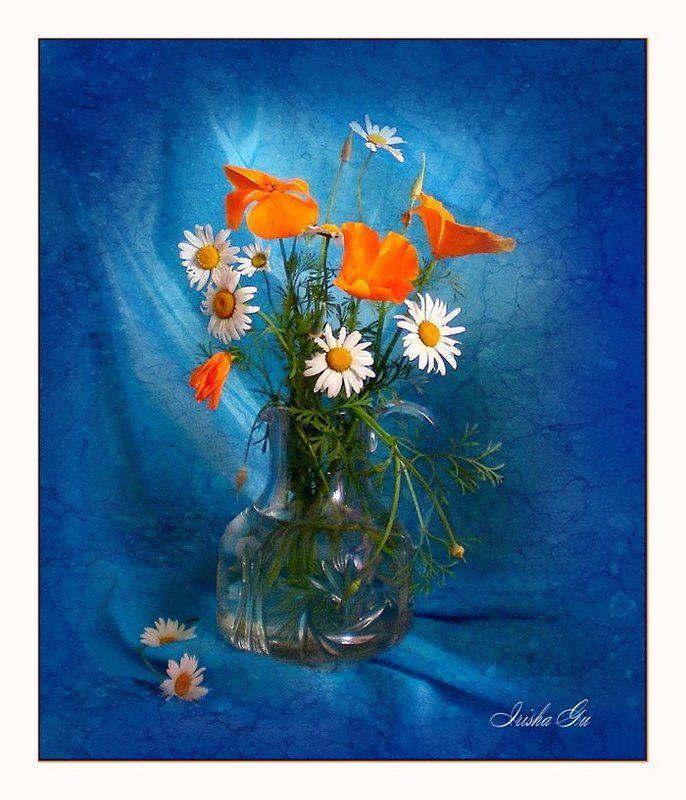 натюрморт, цветы, ромашки photo preview