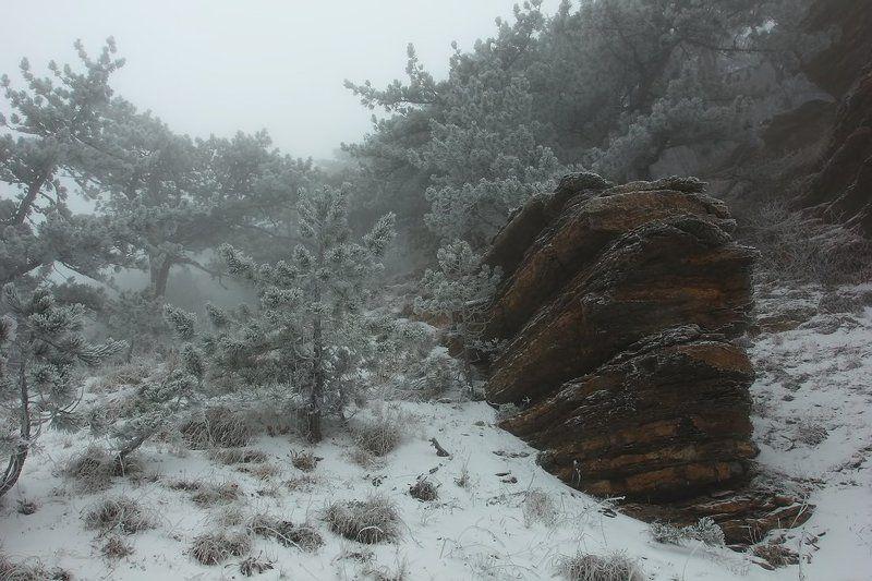 Скалы туманного Таракташаphoto preview