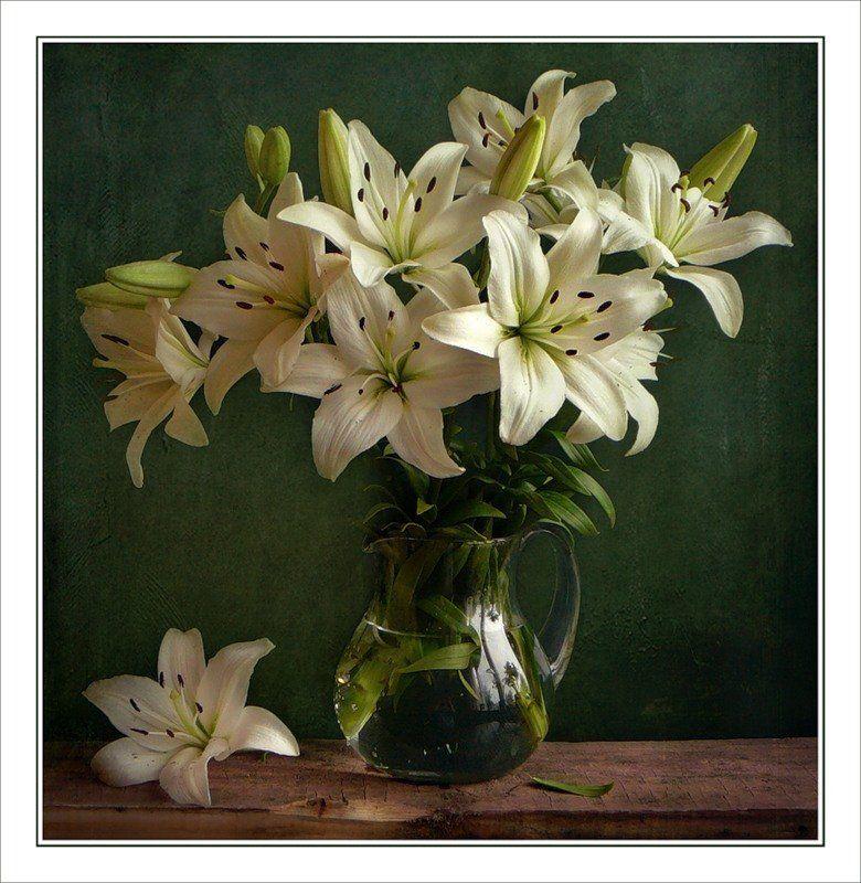 Открытка, поздравительные открытки с днем рождения с цветами лилиями