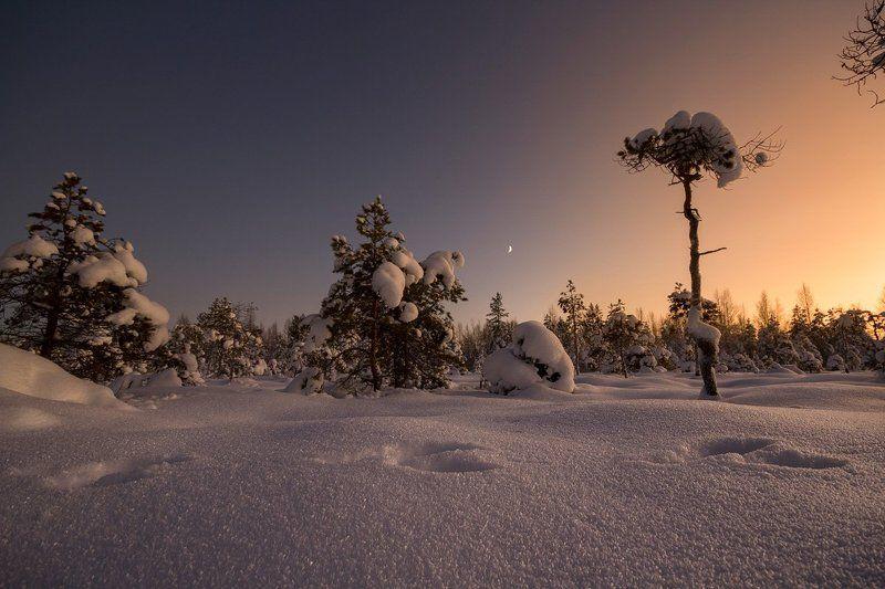 Зима на севереphoto preview