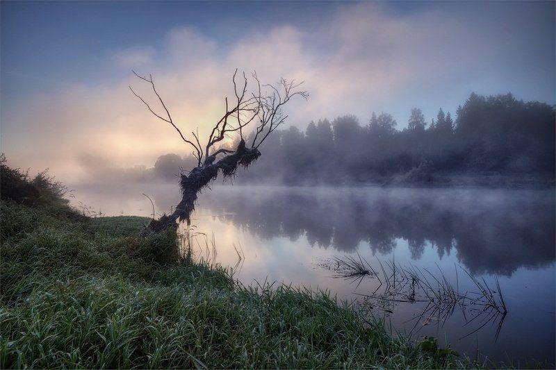 утро, туман, река в небоphoto preview