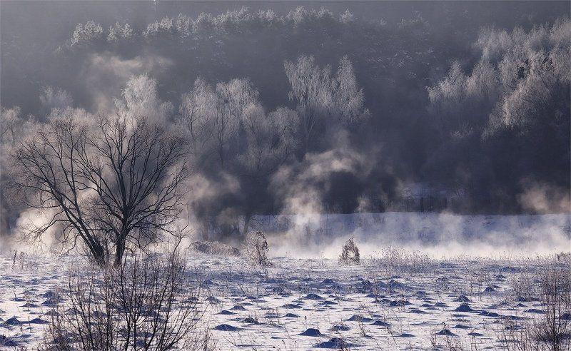 утро, мороз, туман утренний светphoto preview