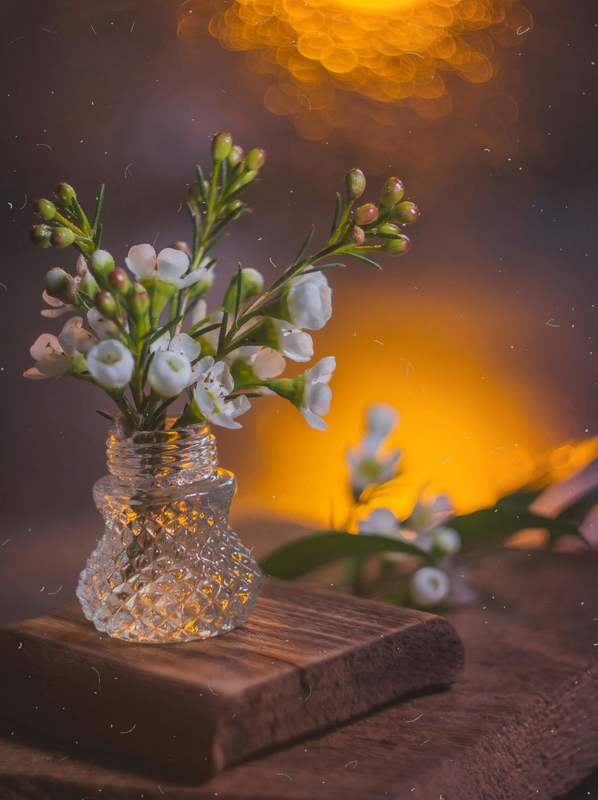 натюрморт, боке, прозрачный, закат, солнце, бутылка, цветы, стекло, красивый, прозрачный, блики, still life Вечерняяphoto preview