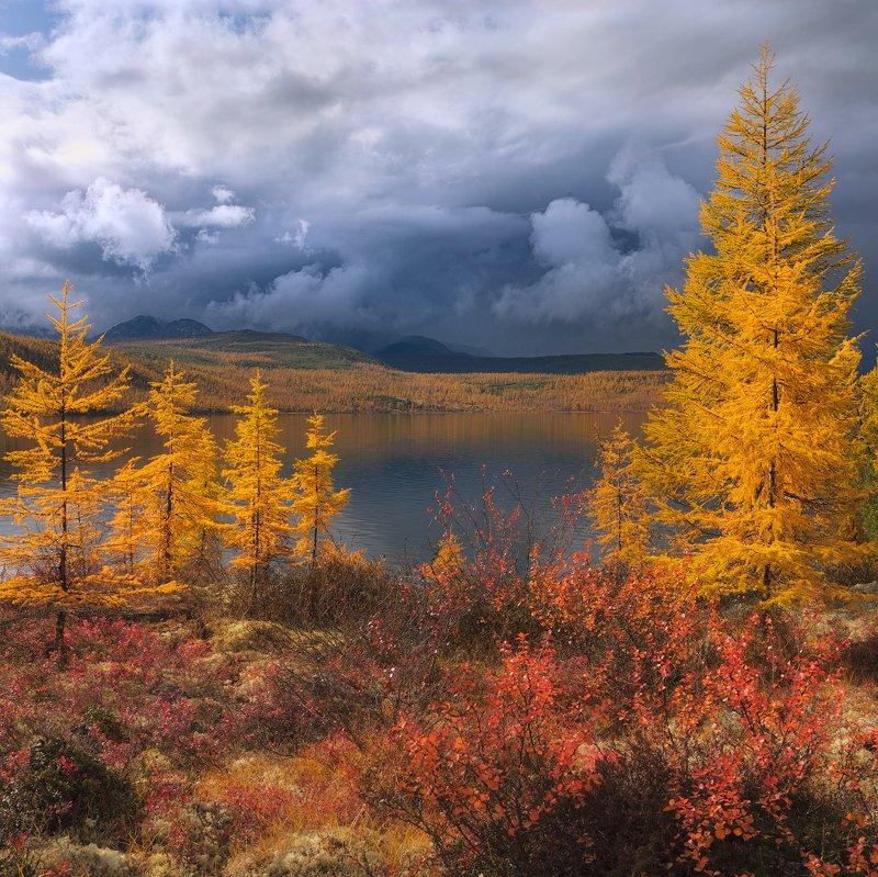 озеро, колыма, озероджекалондона Непогода на Джекеphoto preview