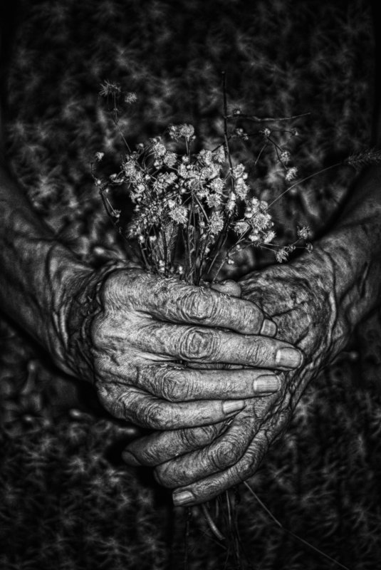 woman, old age, old woman, hands, flowers, женщина, старость, старуха, руки, цветы, conceptual, black and white,  концептуально, черно-белое I hide myself within my flowerphoto preview