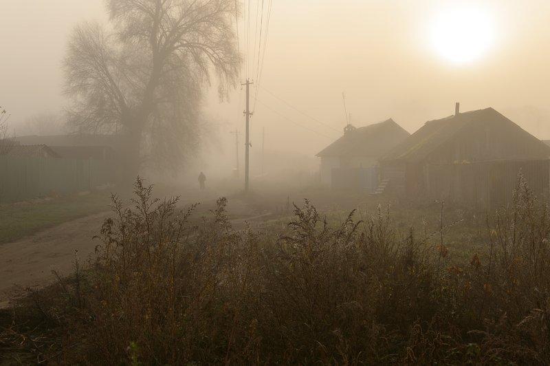 рассвет,туман,россия,деревня,человек,утро \