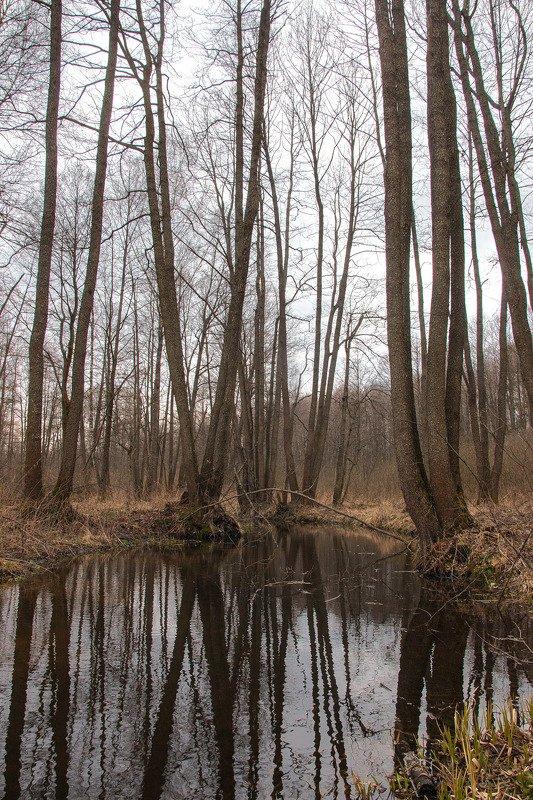 Весенний пейзаж на рекеphoto preview