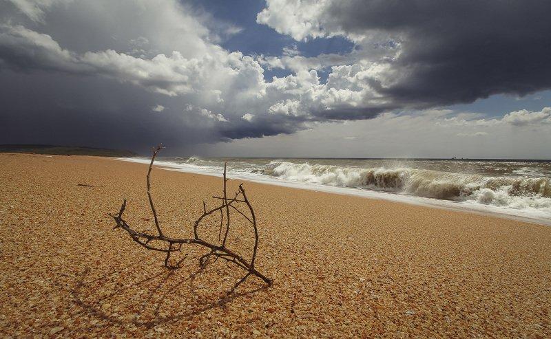 крым, crimea, опук, черное море, заповедник Между штормовphoto preview