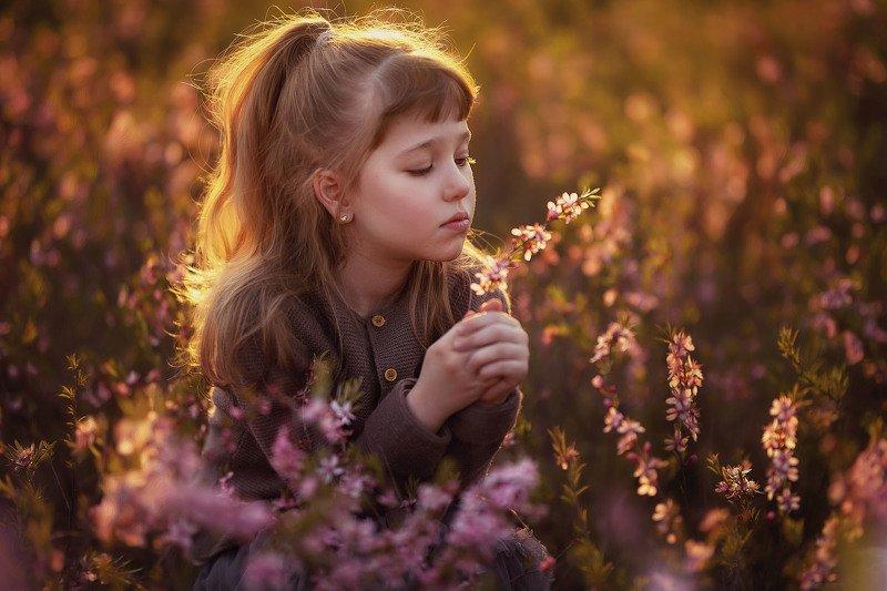 девочка  детство, вечер, парк,  закат, цветы весна photo preview
