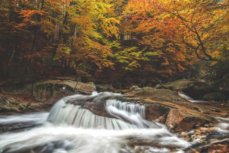 autumn,mountains,canon,waterfall Autumn, Act One.photo preview