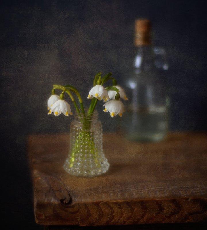 натюрморт,цветы,белоцветник,весна,первоцвет белоцветник... фото превью