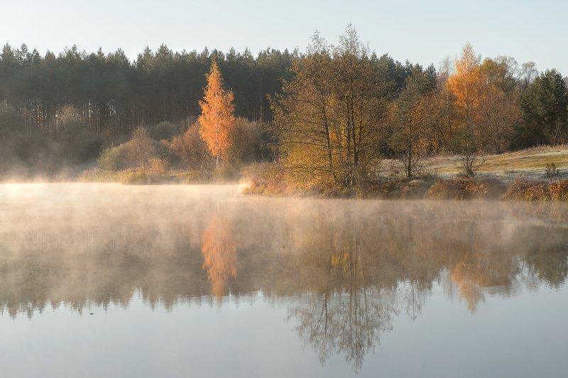 пейзаж,природа,россия,утро,рассвет,красота \