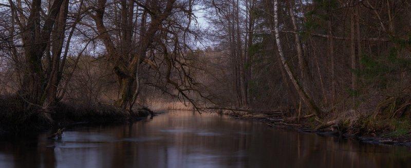 река Уша, весна, река, берега, деревья На мрачных берегахphoto preview