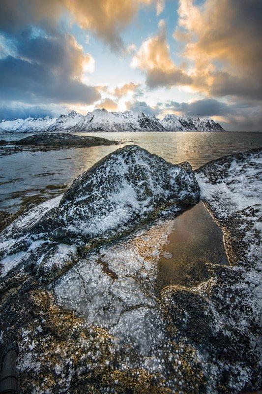 Golden Ice. фото превью