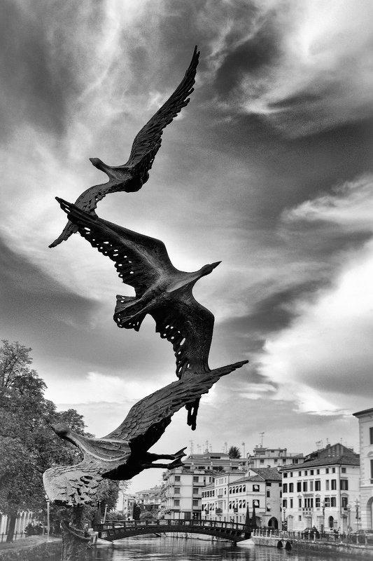 Скульптурный Тревизоphoto preview