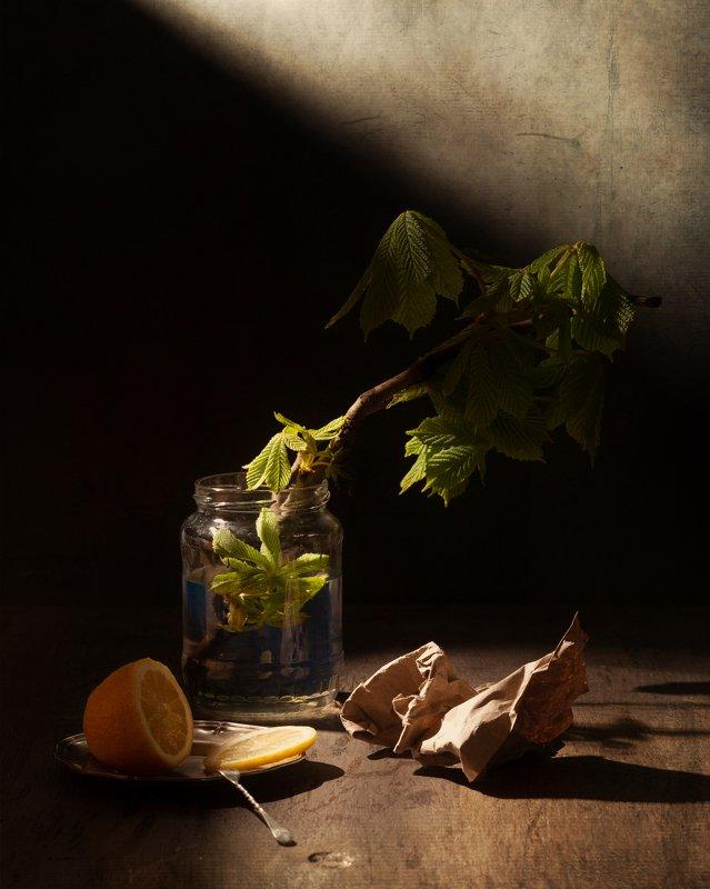 Весенний светphoto preview