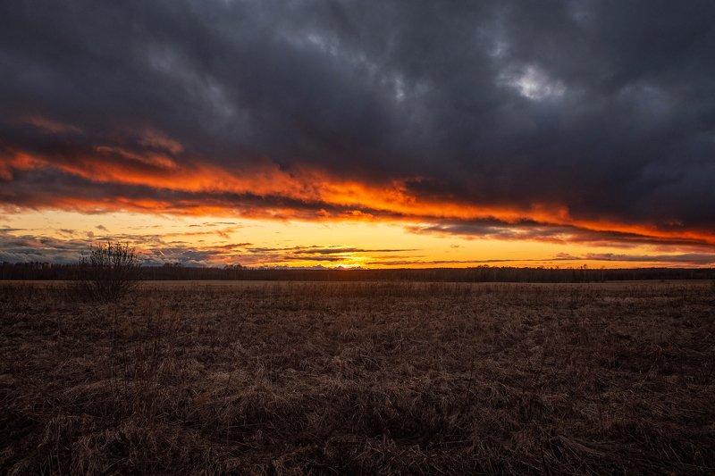 закат, небо, облака, мрачные облака, пейзаж, поле Пламенный закатphoto preview