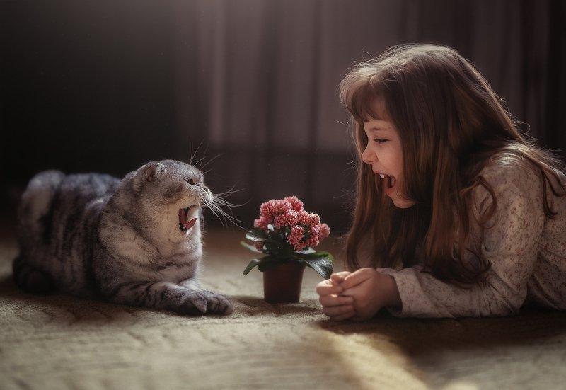девочка, кот, , дуэт, детство, , ссора, примирение, изоляция, дом, друзья, детство Война мир.photo preview
