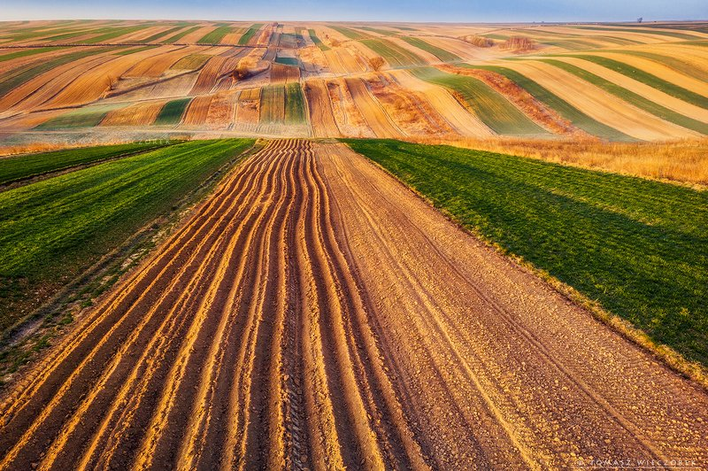 poland, polish, landscape, sunrise, sunset, colours, awesome, amazing, adventure, travel, beautiful, morning, light, fields, spring, drone, air, infinity, carpets The fieldsphoto preview