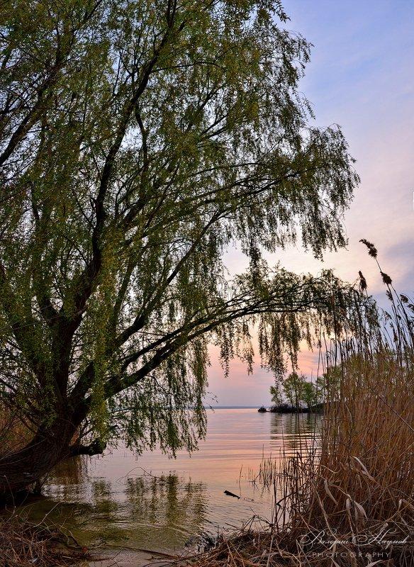 утро, 19 апреля, пасха, рассвет, восход, река, небо Спокойствие пасхального утраphoto preview