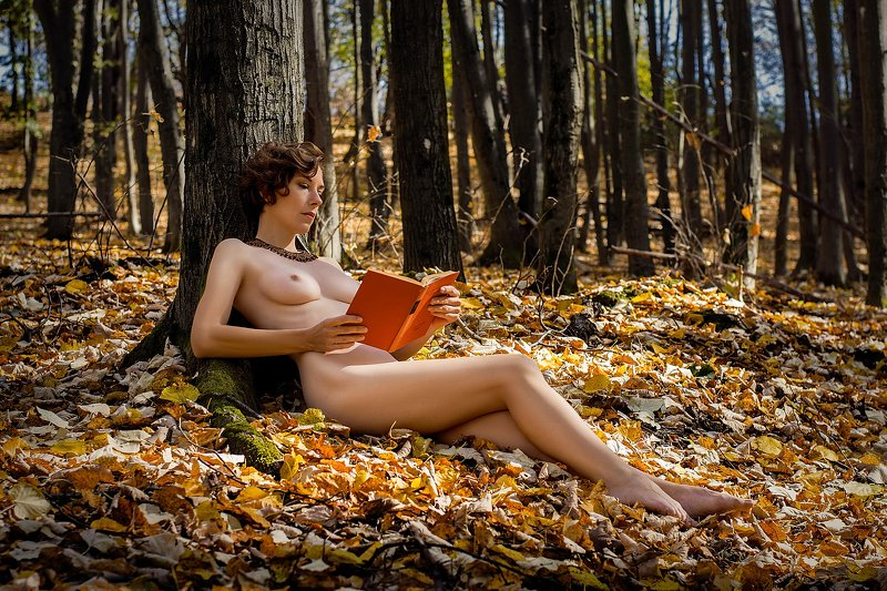 model, nude, naked, fine art, sexy, sensual, color, woman, female, body, legs, erotica, glamour, curves, natural light, nature, autumn, Autumnphoto preview