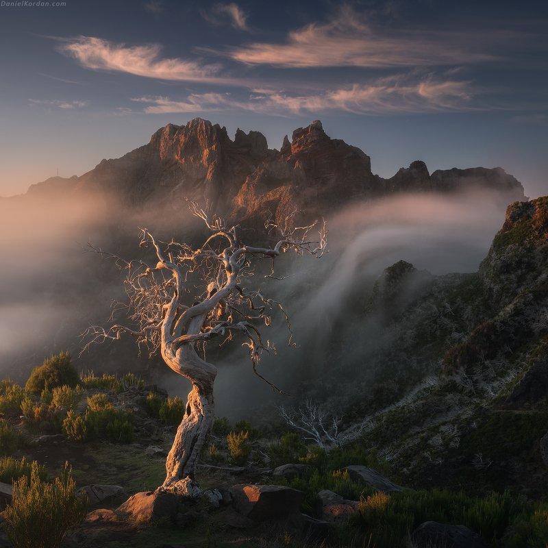 Cloudfall фото превью