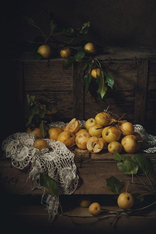 яблоки, лето, натюрморт, удмуртия Яблочные зарисовкиphoto preview