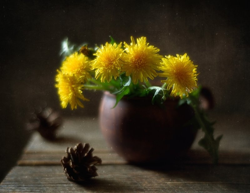 натюрморт,цветы,одуванчики,весна одуванчики... фото превью