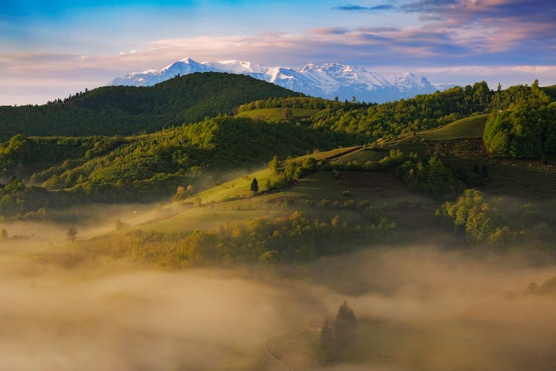 spring, trees, green, snow, landscape, travel, nature, mountain, romania, sunrise Magic Morningphoto preview