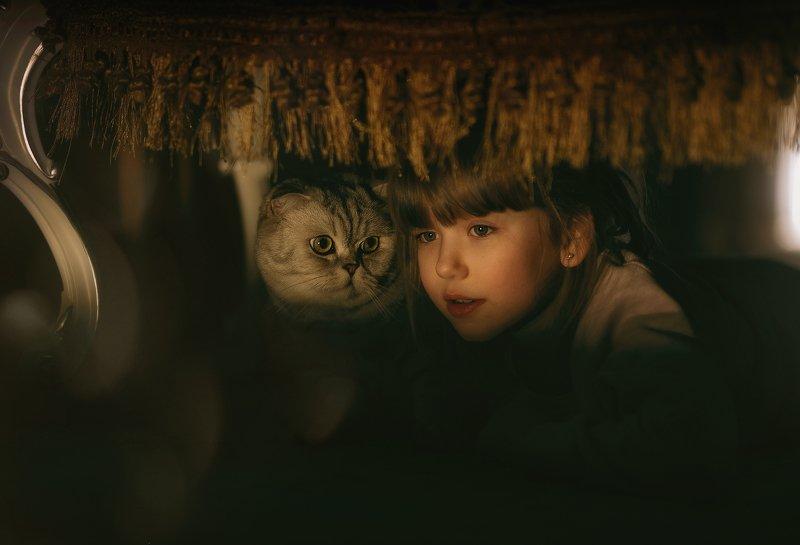 девочка кот дуэт детство вечер тайна дом уют взгляд домашний питомец друзья Подпольный кинотеатр.photo preview