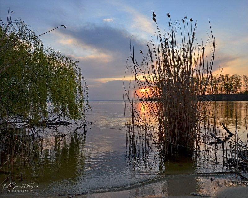 утро, рассвет, восход, весна, апрель Пасмурное утроphoto preview