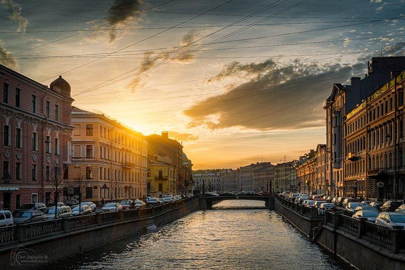 Канал Грибоедова на закатеphoto preview