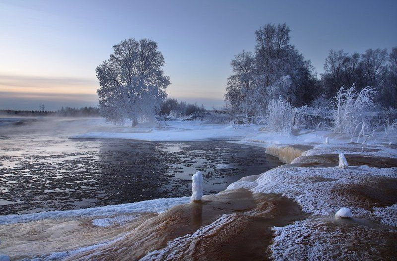 Воды болотныеphoto preview