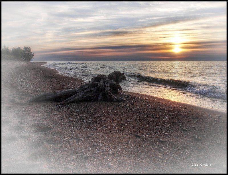 байкал, бурятия, берег, коряга, закат Lonelinessphoto preview