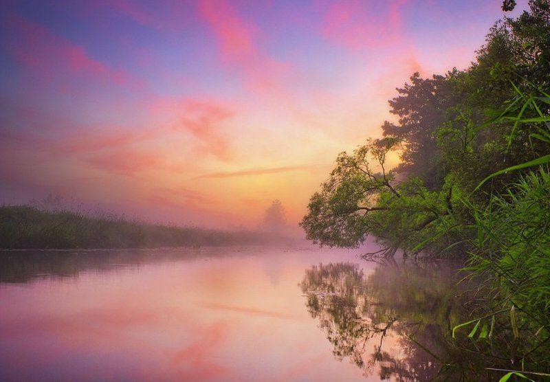 утро, река, небо, Райские цветаphoto preview