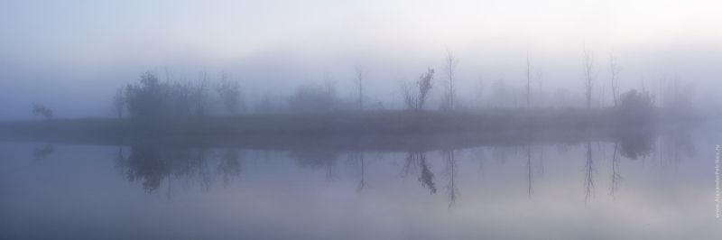 туман, река, деревья, утро, рассвет ***photo preview