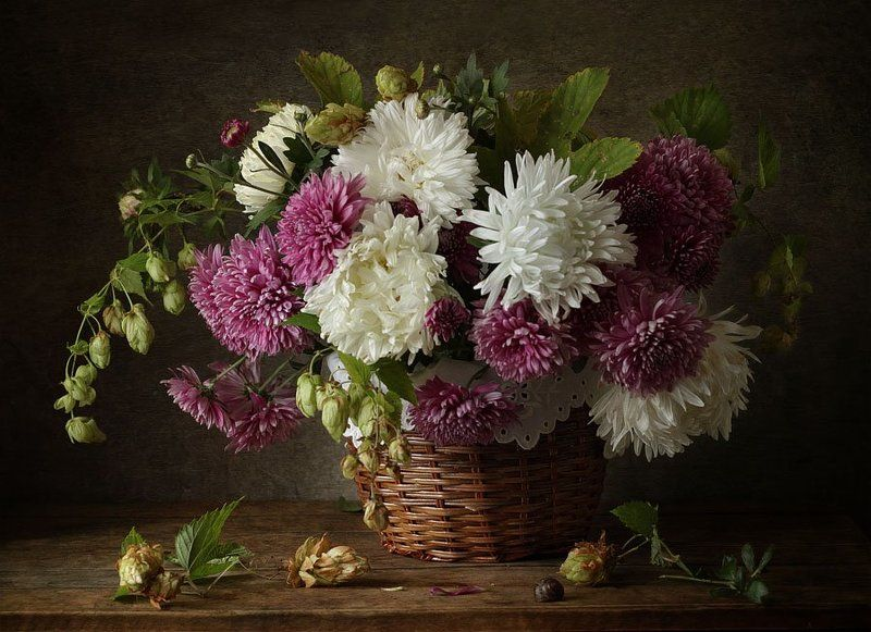 натюрморт, цветы, астры, хризантемы, хмель, корзинка ***photo preview
