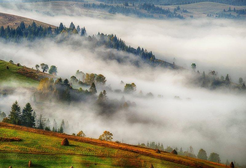 туманная долинаphoto preview