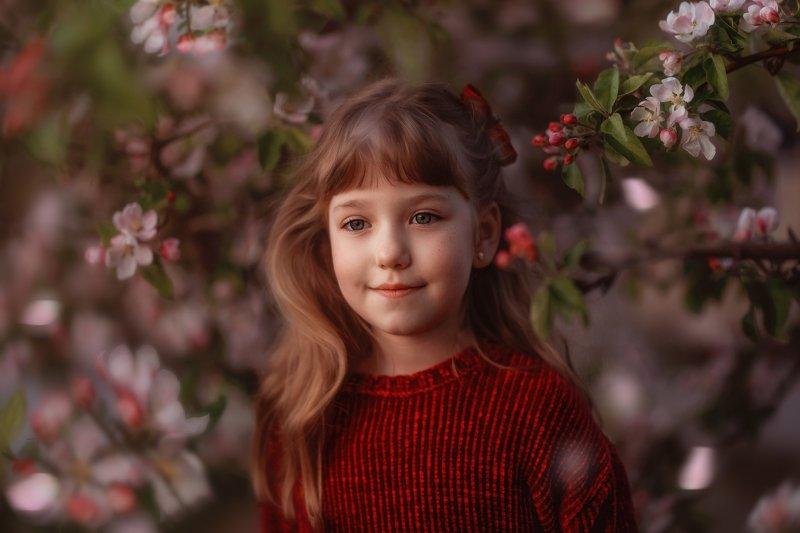 девочка, , , детство, яблоня, цвет, весна, вечер, ребенок, цветы, закат когда яблоня цветет...photo preview