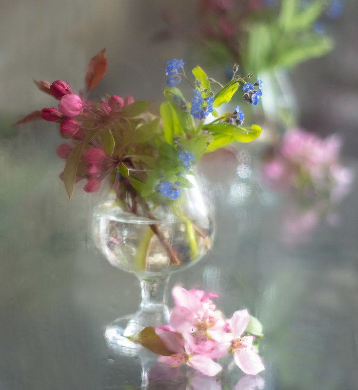 натюрморт,весна,цветы,незабудки,бокал,неживая природа, Весна.photo preview