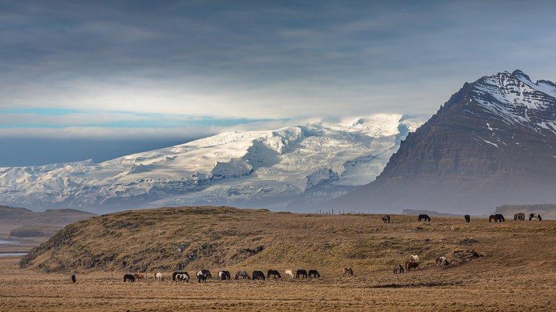 iceland Öræfajökull - Icelandic volcano фото превью