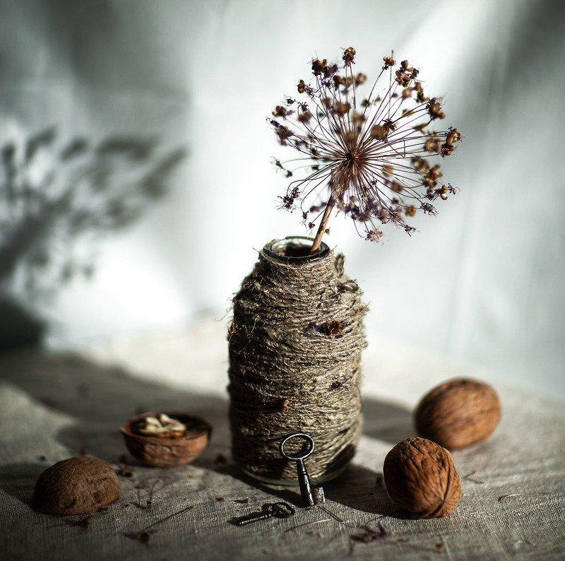 лук,цветок,ваза, натюрморт,ключи,орехи,stilllife, flower, creative, retro, style,nut Сквозь времяphoto preview