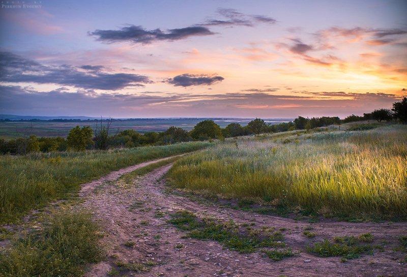 вечер, закат, трава, небо, пейзаж, темрюк, облака Вечерелоphoto preview
