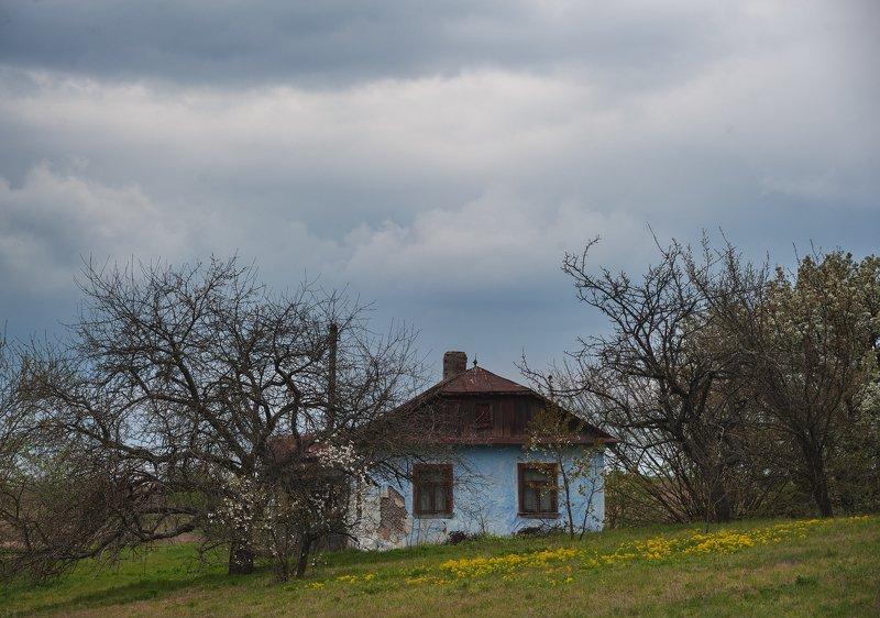 Еще одна весна....photo preview