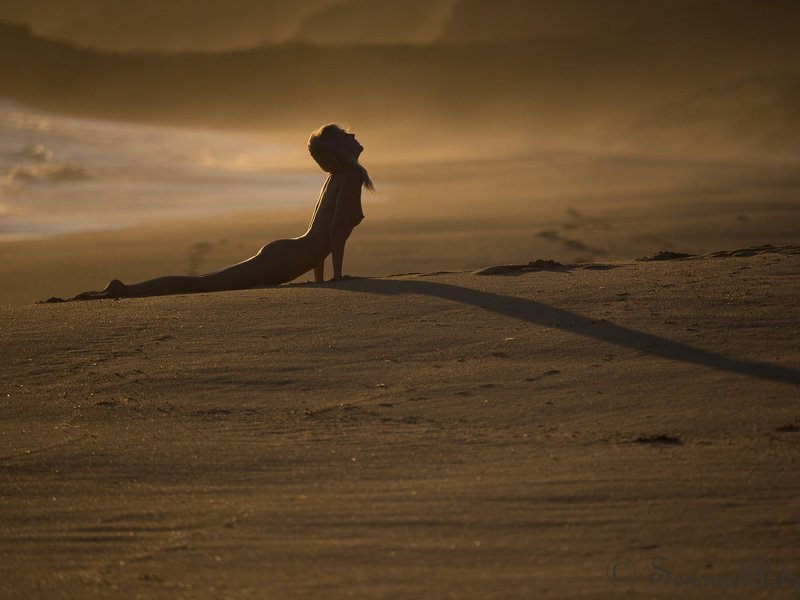 female, woman, nude where have those summer sunsets gone?photo preview