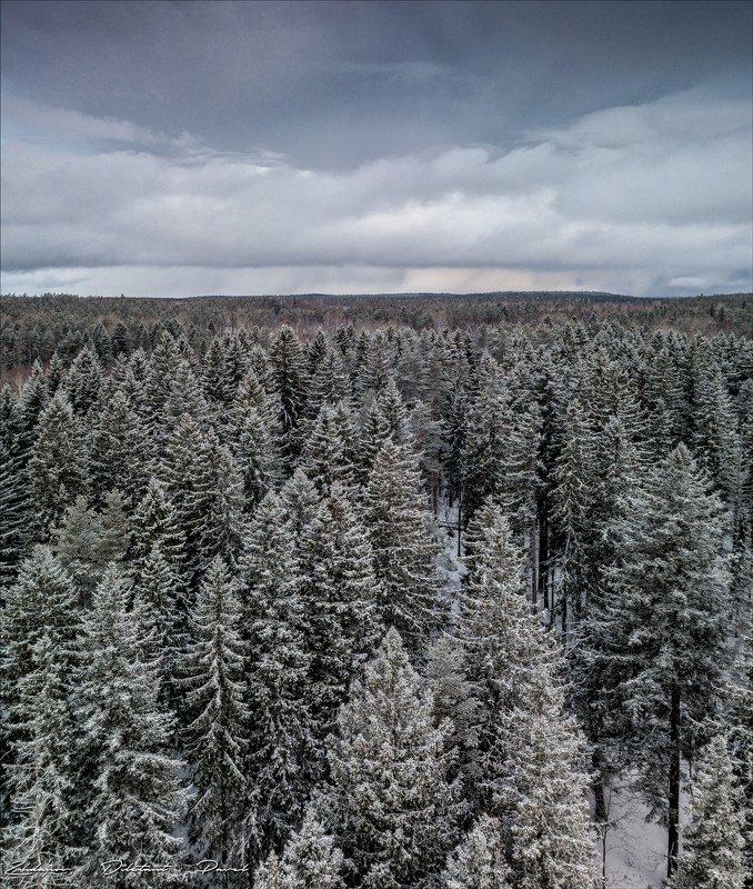 На верхушках Зимы.photo preview