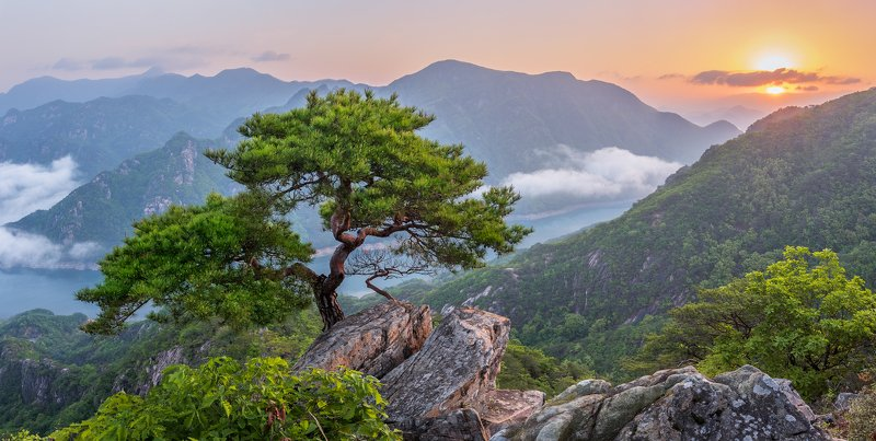 mountains,peak,hiking,fog,clouds,spring,light,korea,pine,sunrise,panorama, river, national park, old Jebibong of verdurephoto preview