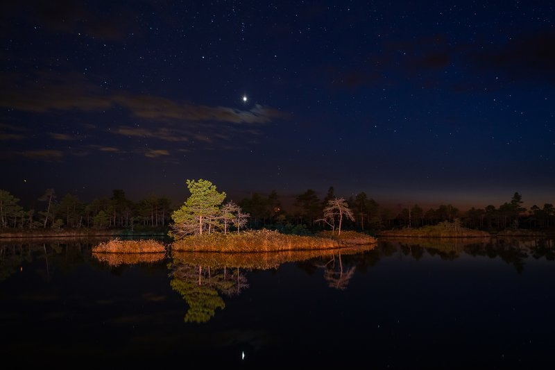 lake,night,stars,light,landscape,nightscape,forest,dark,latvia,kemers,nature, Ostrovphoto preview